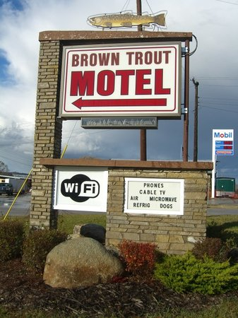 Photo of Brown Trout & Falls Motels Boyne Falls