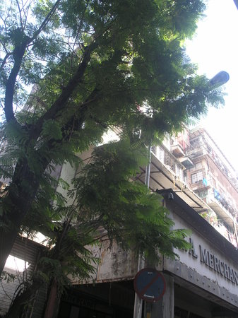 Photo of Jodia Hotel Mumbai (Bombay)