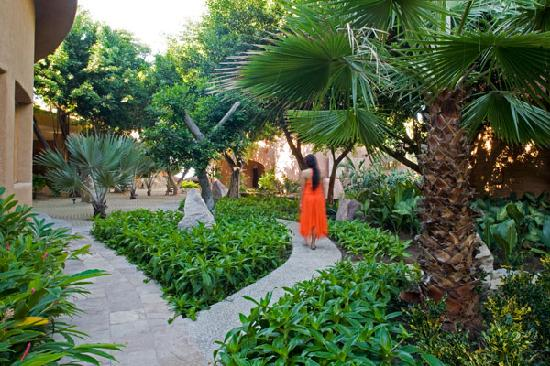 La Casa Que Canta: A tropical garden for day dreaming
