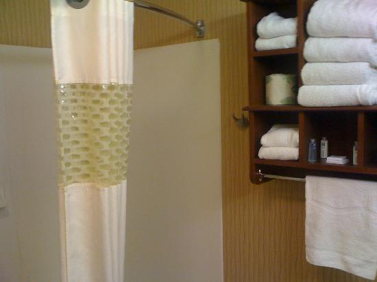 AmericInn Kalamazoo: Shower and attractive storage cubes on wall