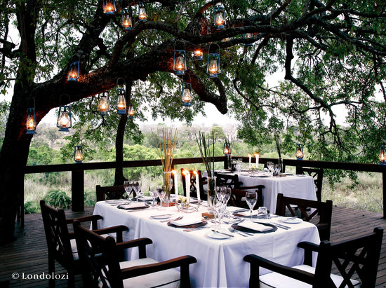 Londolozi Tree Camp