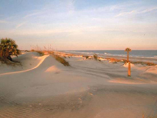 Georgia: Camden County Cumberland Island Beaches