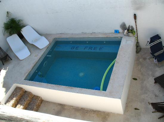 Hotel Latino: pool