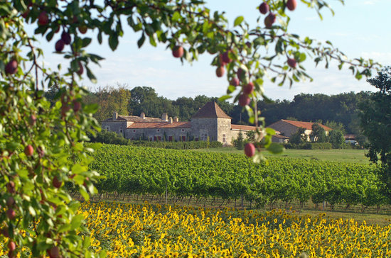Chateau des Baudry