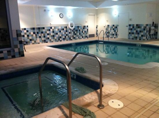 Hilton Garden Inn St Louis Airport: pool and whirlpool