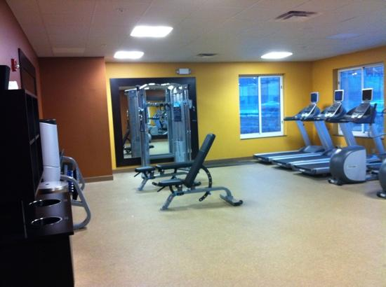 Hilton Garden Inn St Louis Airport: fitness center only cable free weights and cardio