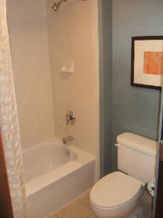 Hyatt Place Memphis Primacy Parkway: Shower