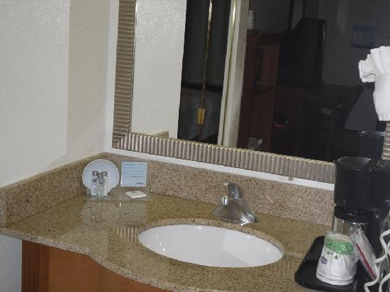 Hampton Inn Monroe: sink area
