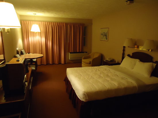Fleetwood Inn and Suites: 1 Queen Bed Room