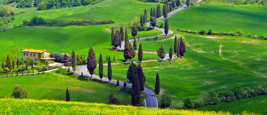 We Drive You Tuscany
