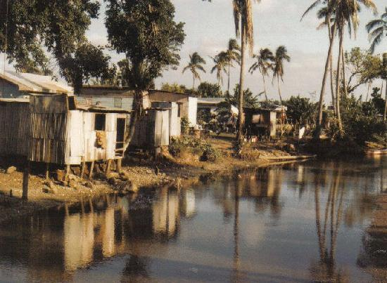 Fidji : Shanty houses Viti Levu Fiji 