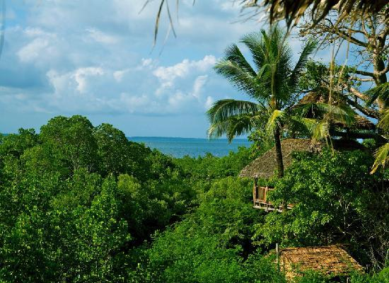 Chole Mjini Lodge: View from our tree houses