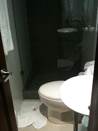 Virrey Park Hotel: Bathroom