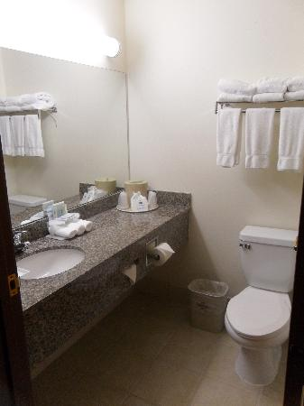 Holiday Inn Express Hotel & Suites North Seattle - Shoreline: Bathroom
