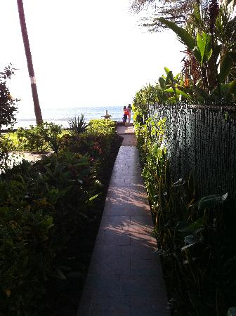 Hale Maui Apartment Hotel: garden path to the beach
