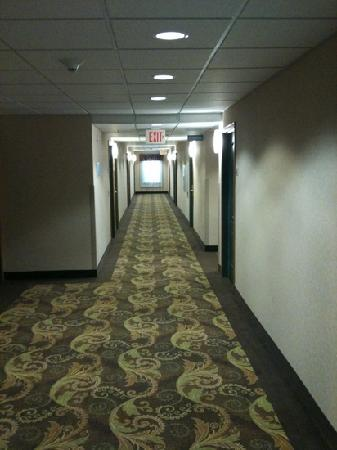 Country Inn & Suites St. Augustine Downtown Dist: third floor hallway