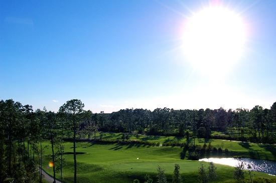 Waldorf Astoria Orlando: View from our balcony (2)