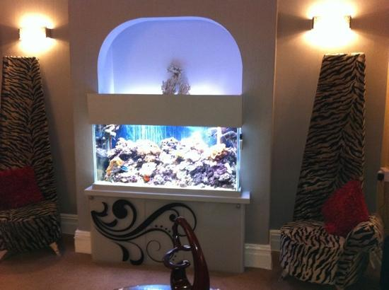 The Kenley: Fish tank in bar