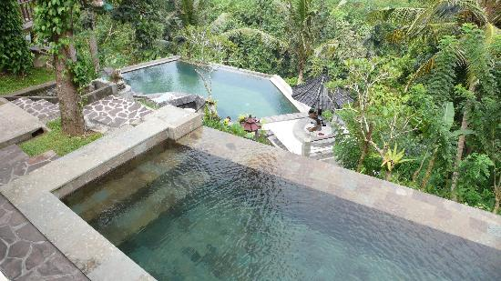 Fantastic by bali standards but not by international standards beji ubud resort pictures - Small infinity pool ...