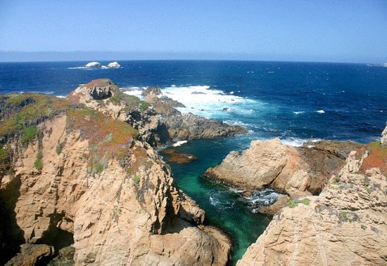 Garrapata State Park Carmel 2019 All You Need To Know