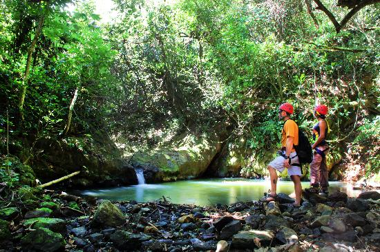 Dorado, Puerto Rico: One of the pools at the beautiful tropical creek