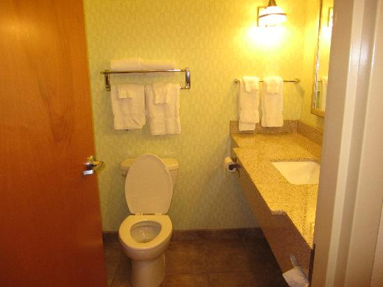 Comfort Suites Stonecrest: Nice bathroom