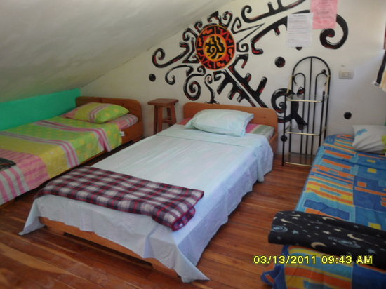 Sloth Backpackers Bed & Breakfast: Dorms