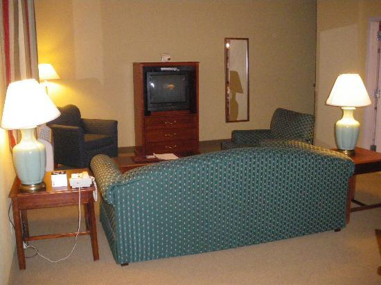 Comfort Inn & Suites Seattle: Living Room