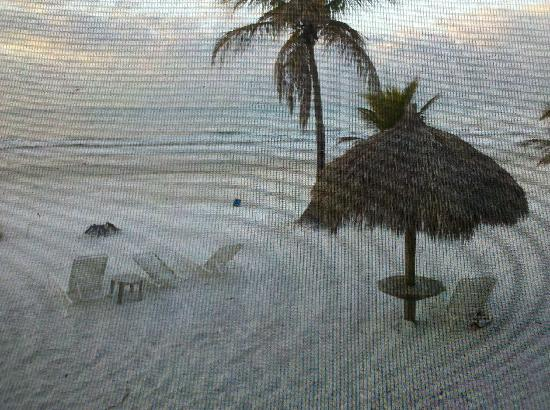 Tiki on the Beach: Taken from inside my screened in back porch