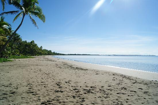 deuba beach Up to 80% off view maps, photos and guest reviews on 10 hotels in deuba, fiji   tubakula beach bungalows offers a comfortable setting when in deuba.