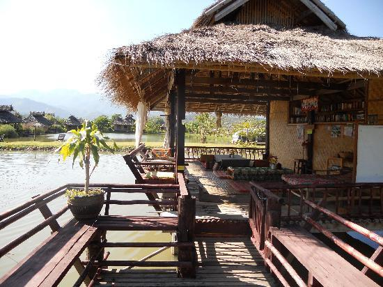 Bueng Pai Farm: The library and the view!
