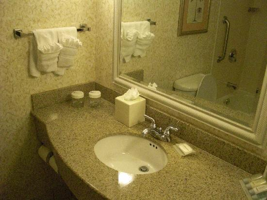 Hilton Garden Inn Ft. Lauderdale SW/Miramar: bathroom