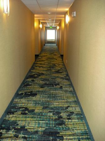 SpringHill Suites Frankenmuth: 2nd floor hallway