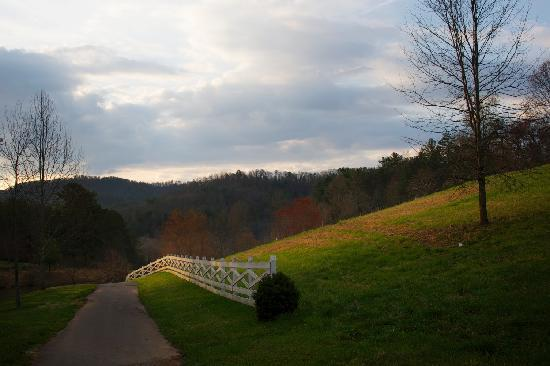 Walland, TN: a morning walk at Blackberry