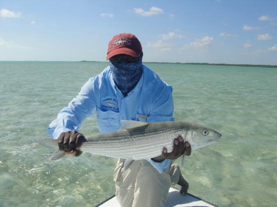 Andros Island Bonefishing Club: Captain Nick Leadon