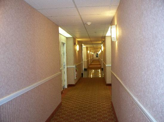 La Quinta Inn &amp; Suites Erie: hallway