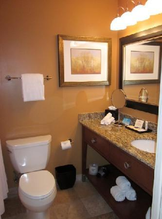 Crowne Plaza Hotel Washington DC-Rockville: Bathroom