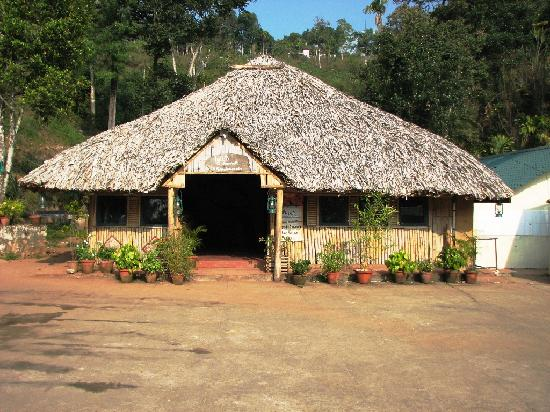 Igloo Nature Resort: Igloo - Ayurvedic Massage Center