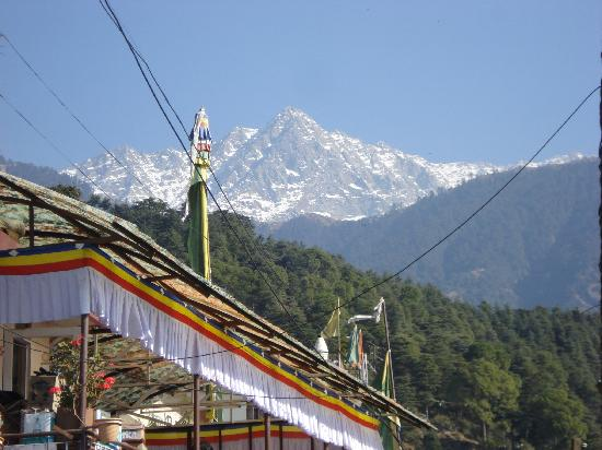 Dharamsala, India: Wow! The Dauladhar