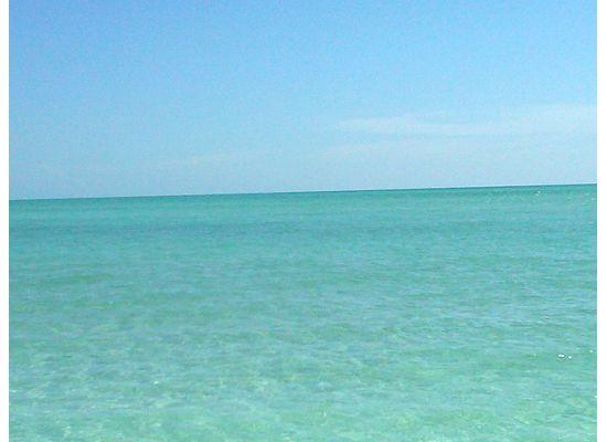 Isla Anna Maria, FL: Warm Waters of the Gulf- June 2010