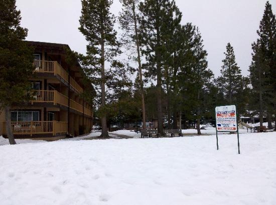 Tahoe Beach and Ski Club: Snow covered beach!