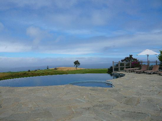 The Lodge at Kauri Cliffs: Pool