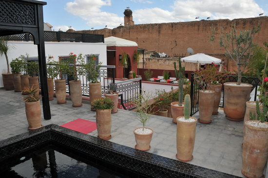 Photo of Riad Alegria Marrakech