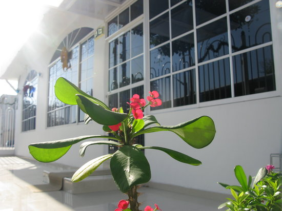 Photo of Hotel La casona Barranquilla