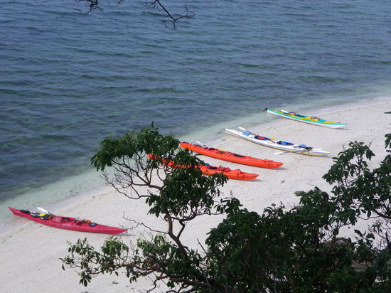 Island Escapades Kayaking - Day Trips