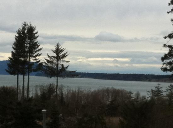 Anacortes Ship Harbor Inn: view from the front porch of our room.