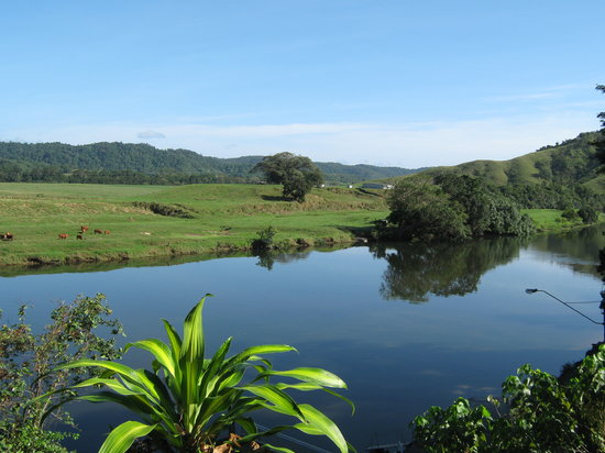 Photo of Daintree Riverview Lodges & Camp Ground