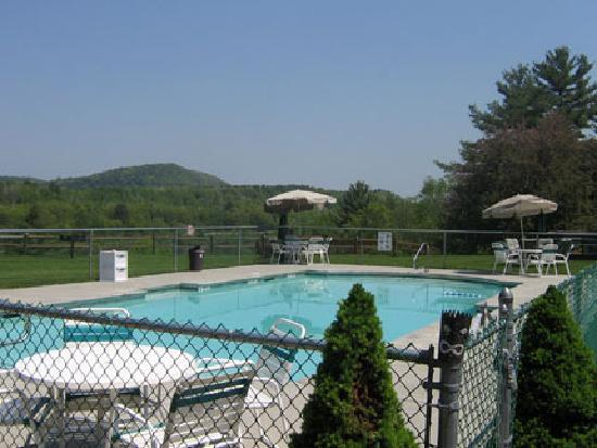 Chieftain Motor Inn: Relax and play in our heated pool.