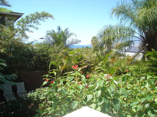 Maui Homestay B&amp;B: A view from the breakfast lanai