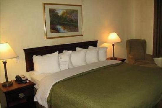 Country Inn & Suites Newport News South: 1 - King Bed Suite